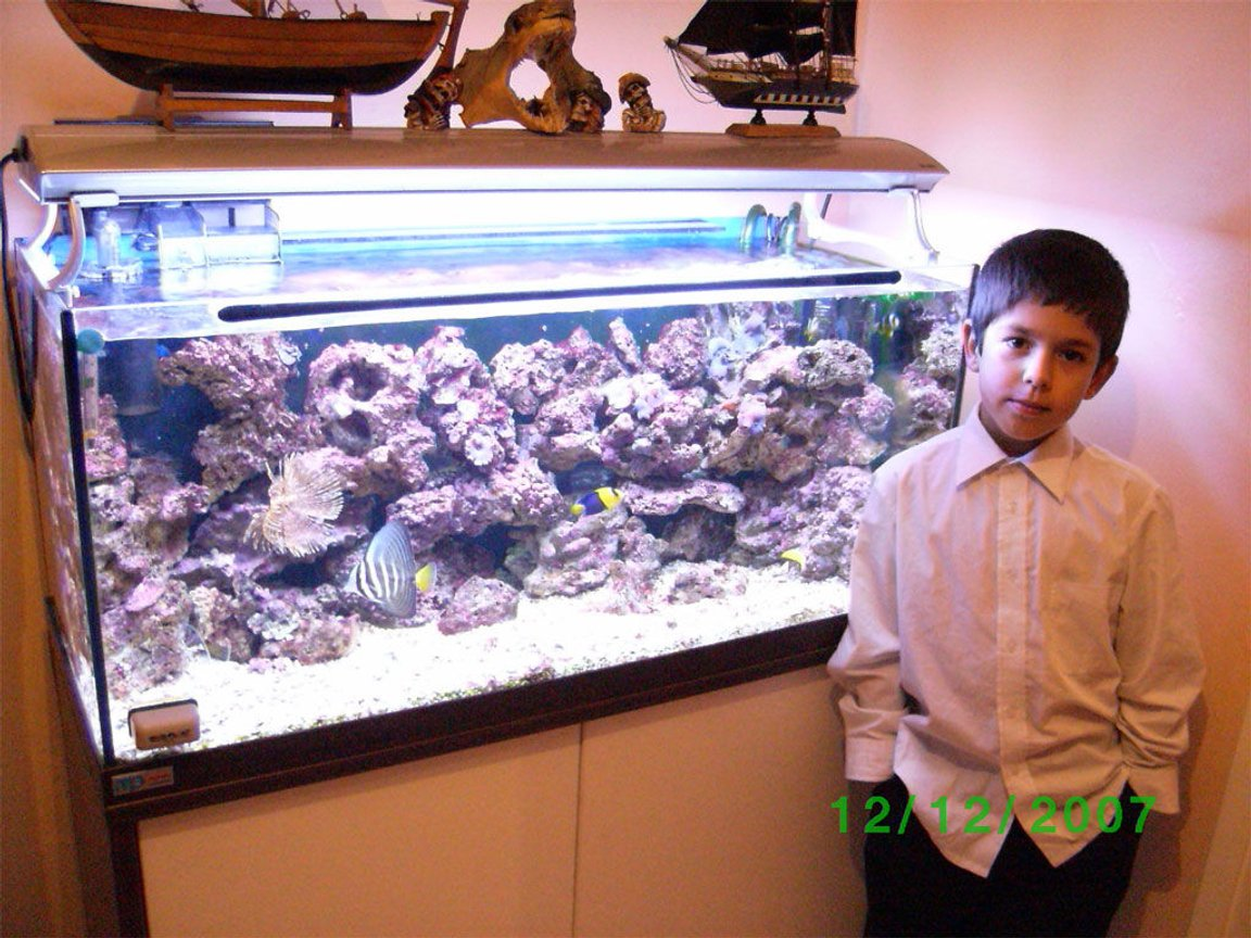 50 gallons reef tank (mostly live coral and fish) - My son Michael and my Aquarium.