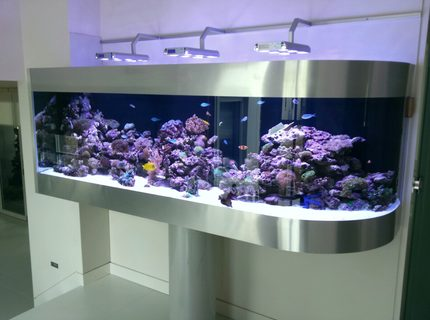 Rated #2: 300 Gallons Reef Tank - Australian reef tank on pole support