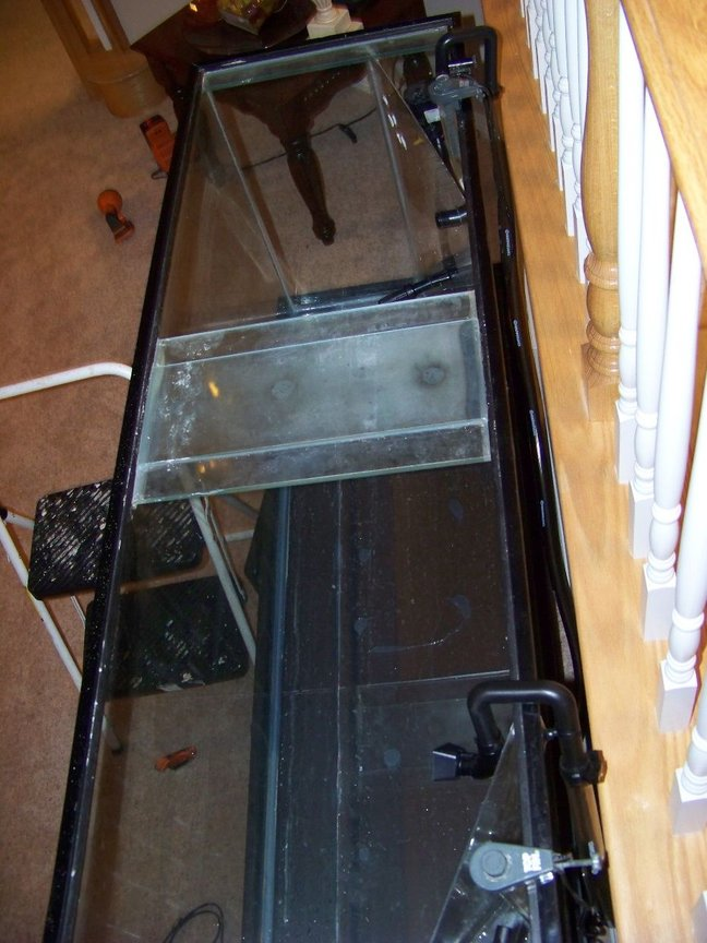 120 gallons freshwater fish tank (mostly fish and non-living decorations) - Finished Plexy work.