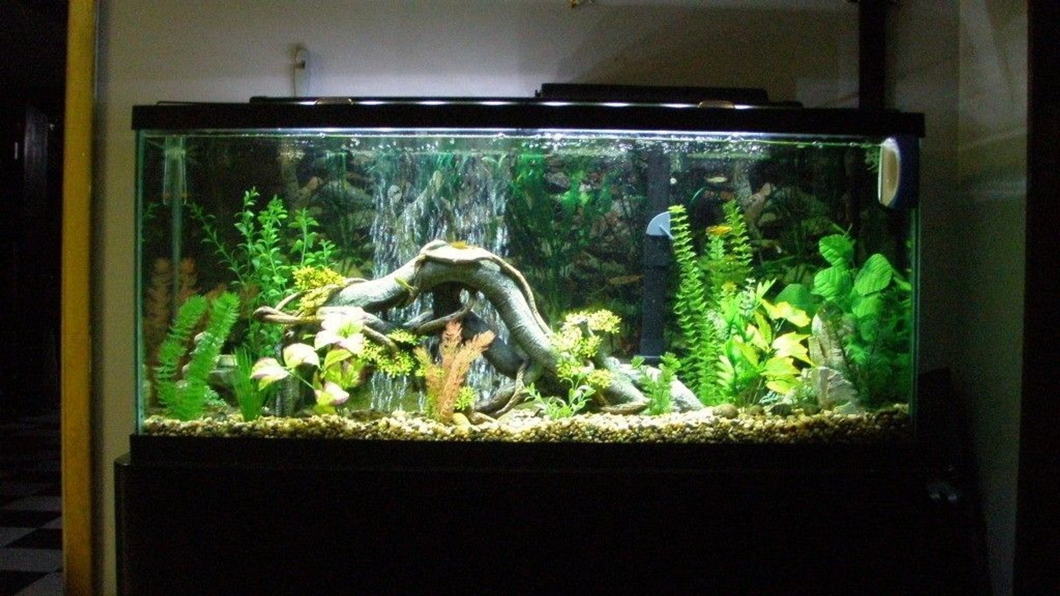 "55 gallons freshwater fish tank (mostly fish and non-living decorations) - my first fish tank ever. its a 55 gallon freshwater. filter is a marineland Emperor 400,water heater is marineland Stealth Pro Heater 250-watt set at 82 degrees keeps the tank at 80 degrees. lighting is marineland led lighting system. air pump is Aquarium Pharmaceuticals RENA 300 with 12"" air stone."