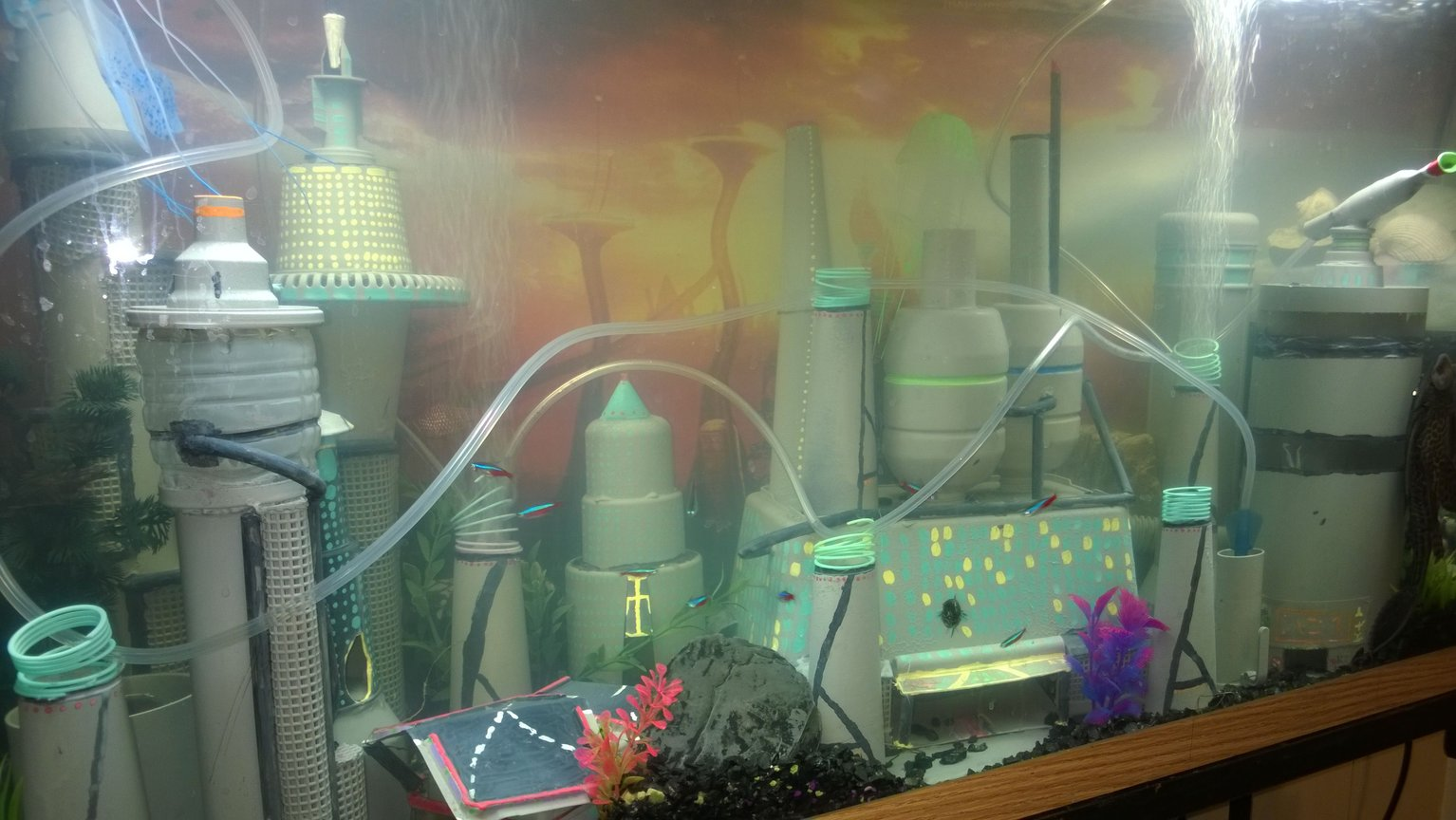 45 gallons freshwater fish tank (mostly fish and non-living decorations) - My space city