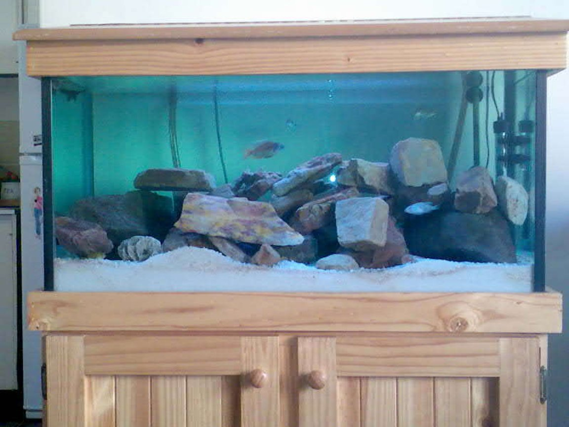 32 gallons freshwater fish tank (mostly fish and non-living decorations) - Tank with wood stand