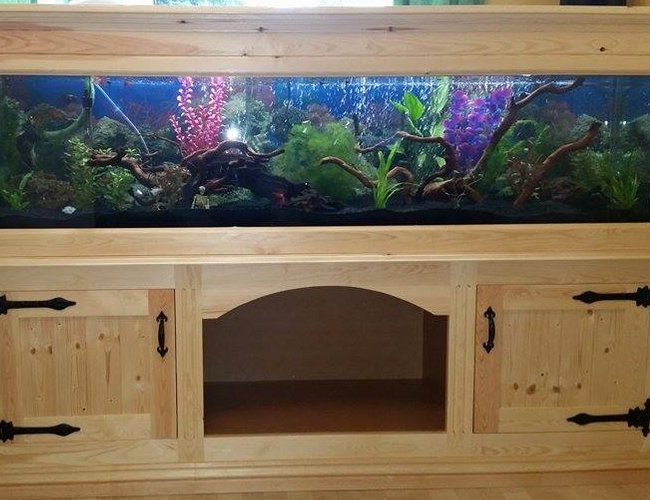 85 gallons freshwater fish tank (mostly fish and non-living decorations) - 72x18x18 homemade aquarium stand