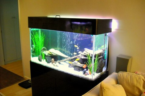 Rated #80: 75 Gallons Freshwater Fish Tank - 75Gal, Marineland 350 dual bio wheel, Jebo 300W heater, DIY GE Lighting, Lava Rocks, Slates, 1/4 white graval