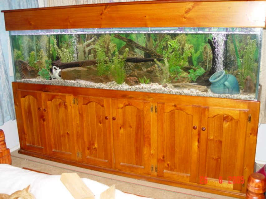Rated #81: 190 Gallons Freshwater Fish Tank - 8x2x2 tank