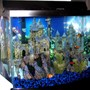 28 gallons freshwater fish tank (mostly fish and non-living decorations) - Medieval Village - 28 G Bowfront