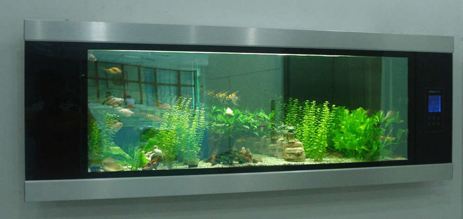 Himat 39 s freshwater tanks details and photos photo 9876 for Wall mounted fish tanks