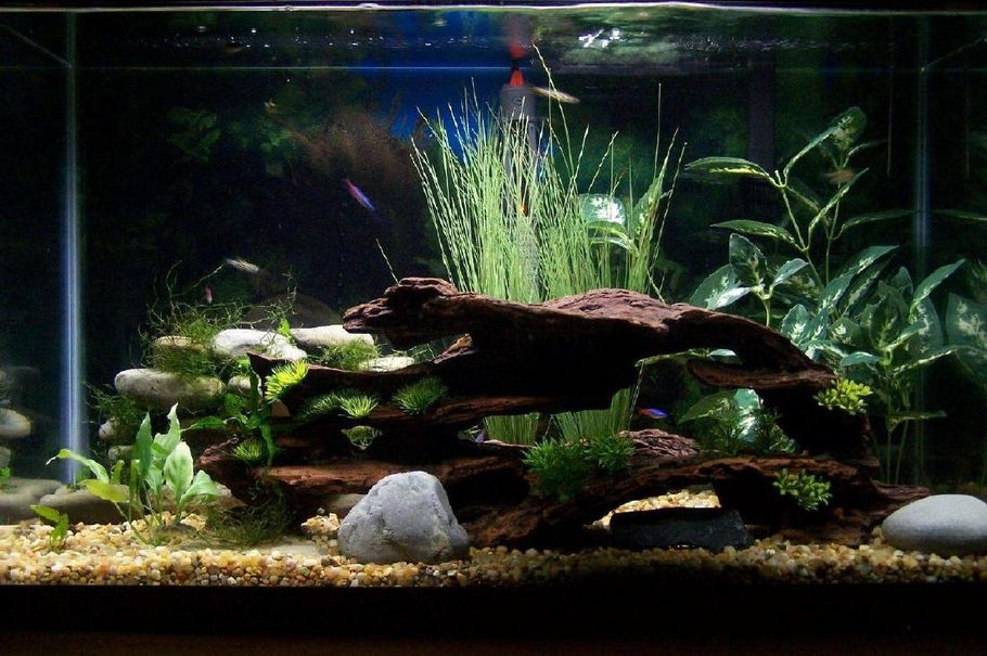 Supra400hptt's Freshwater Tanks Details and Photos - Photo ...