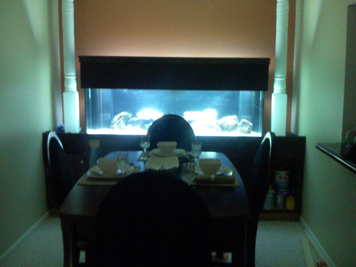 fish tank picture - 125 Gallon fish tank with custom stand 2
