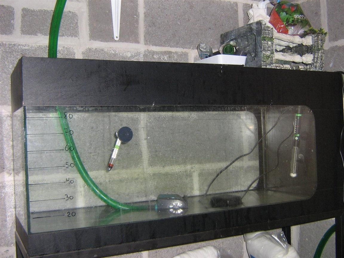 fish tank picture - This tank is used to prepare saltwater