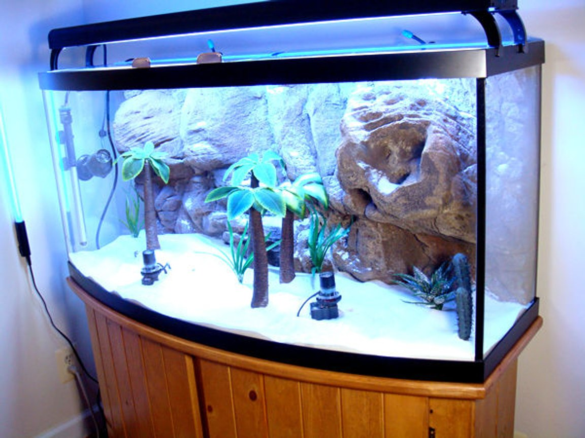 fish tank picture - Another view of the old layout of the tank prior to it being redone. The new decorations were siliconed to the botton prior to the subtrate being added. All the plants are ceramic or hard plastic i.e. Cichlid-Proof