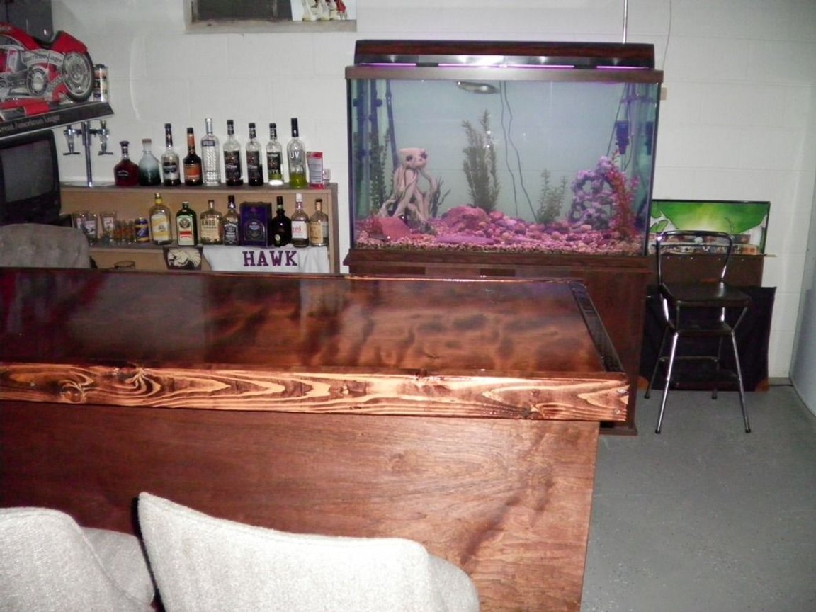 fish tank picture - setting for the 180, basement bar :-D