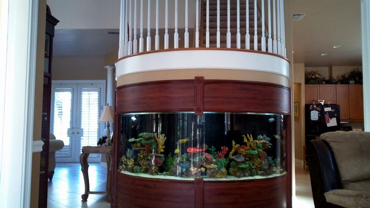 fish tank picture - further away view