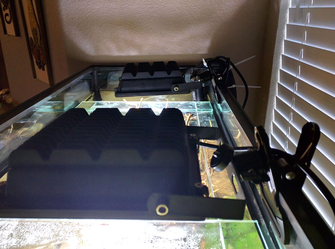 fish tank picture - 2x 20watt led flood lights