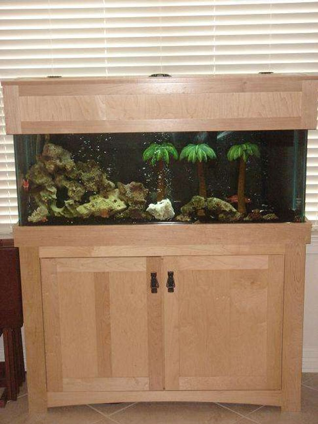 fish tank picture - the tank and stand