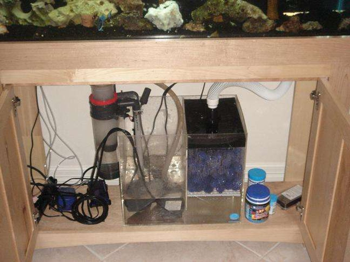 fish tank picture - wet dry bio balls and protein skimmer