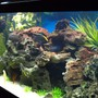 fish tank picture - Diff.View