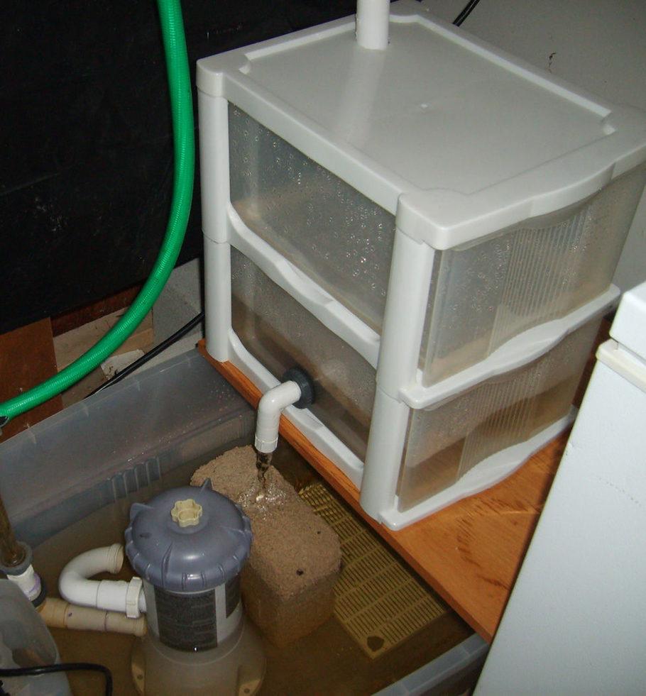 Semper 39 s additional tank picture photo id 21727 full for Filtration aquarium