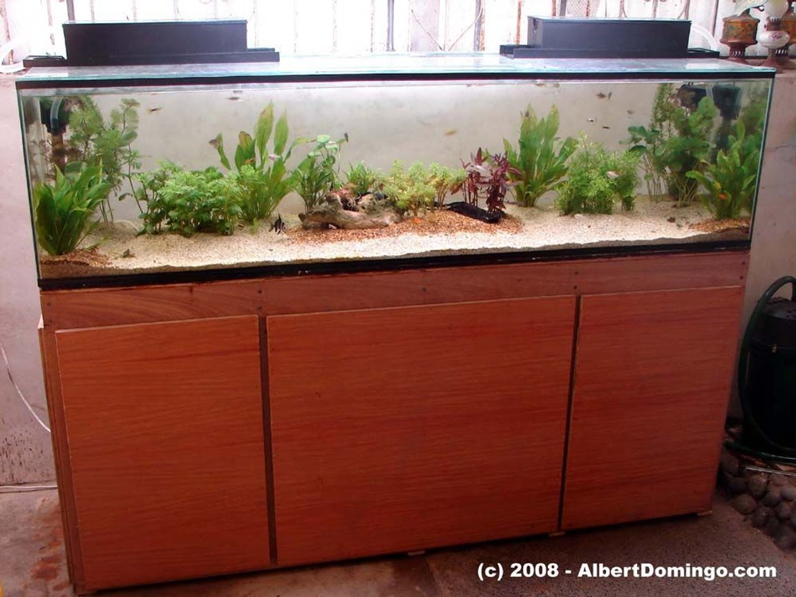 100 gallons planted tank (mostly live plants and fish) - Overview of my aquarium system.